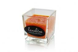 Świeca palmowa Enjoy, soczysta pomarańcza (Lanaline)